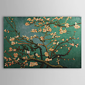 Hndmalede Oliemaleri Filialer af en Almond Tree i Blossom Landskab Van Gogh