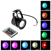 Waterproof 10W RGB Licht Remote Controlled LED Spot Lampe (12V)