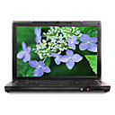 "hasee 14,1 ""wxga/t6400 ddr2/160g/dvdrw/nvidia 2.0g/2g 9300m laptop youya gs/5100an notebook hp650d3"