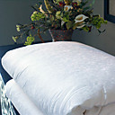 Free Shipping - Jacquard Mulberry Silk Comforter (0600-SCTHB)