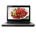 "laptop-HASEE 14,0 pentium ""levou-Intel Core2 (Penryn) t4400 2.2g-1GB DDR2-250g-ATI HD 4530-webcam dvdrw (smq3814)"