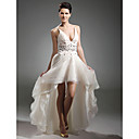 A-line V-neck Asymmetrical Organza Evening Dress