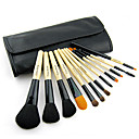 Color Shine-High Quality Wool Brush Set(12pcs)