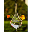 Artistic Hanging Glass Vase