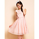 TS Lace Edges Organza Sleeveless Dress