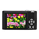 Cmara Digital Panasonic FX12 dom (preto) + livre (carto SD de 2GB + more) transporte gratuito